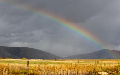 Reën tot in Desember in Kaap moontlik Landbou - Alani Janeke