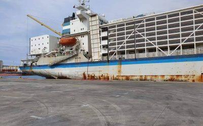 Nuusvrystelling – Vervoer van lewende hawe per skip RMIF